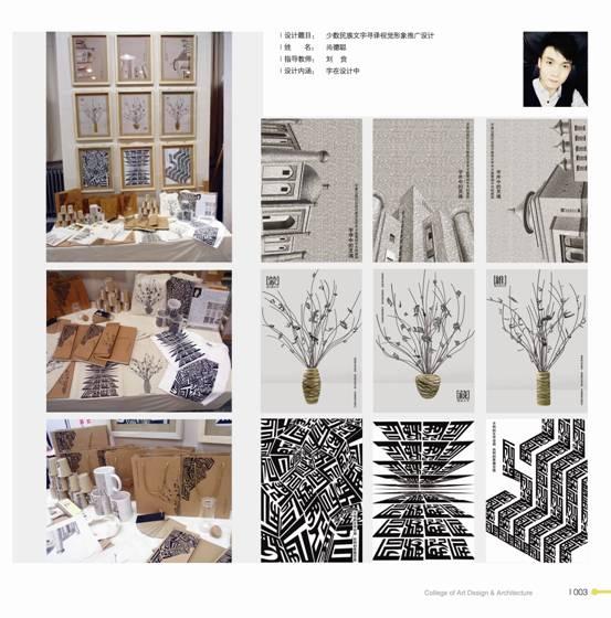 2013届平面设计专业优秀毕业设计作品图片